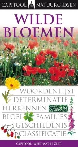 Wilde bloemen  by  Neil Fletcher
