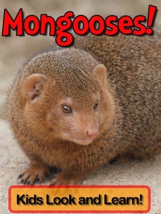 Mongooses! Learn About Mongooses and Enjoy Colorful Pictures - Look and Learn! (50+ Photos of Mongooses)  by  Becky Wolff