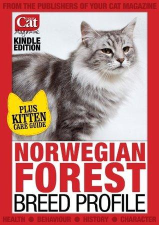 Norwegian Forest Laura Hall