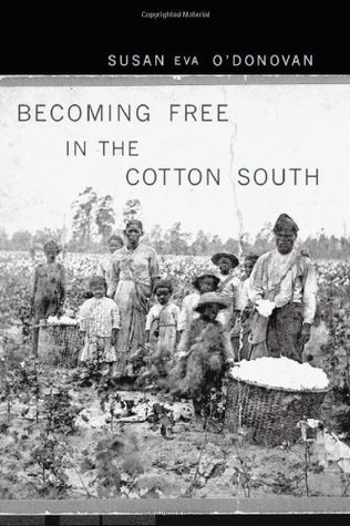 Becoming Free in the Cotton South  by  Susan Eva ODonovan
