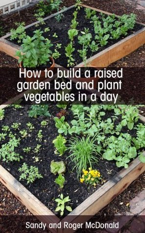 How To Build A Raised Garden Bed And Plant Vegetables In A Day  by  Sandy McDonald