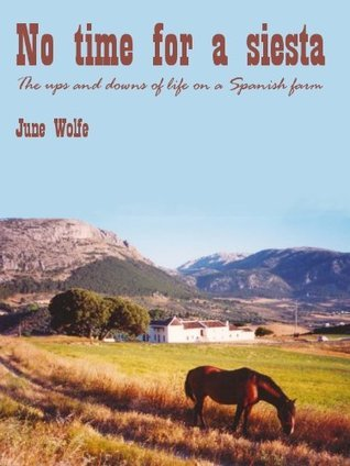 No time for a siesta  by  June Wolfe