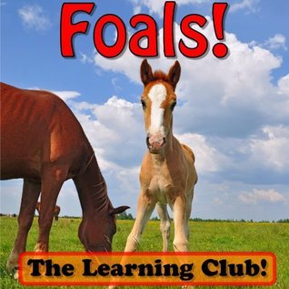 Foals! Learn About Foals And Learn To Read - The Learning Club! (45+ Photos of Foals) Leah Ledos