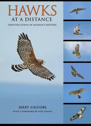 Hawks at a Distance: Identification of Migrant Raptors  by  Jerry Liguori