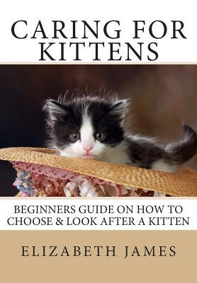 Caring for Kittens: Beginners Guide on How to Look After a Kitten Elizabeth James