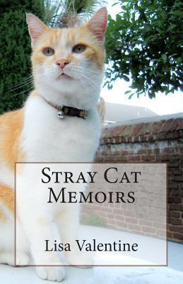 Stray Cat Memoirs Lisa M Valentine