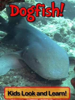 Dogfish! Learn About Dogfish and Enjoy Colorful Pictures - Look and Learn! (50+ Photos of Dogfish)  by  Becky Wolff