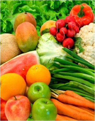 The Raw Foods Diet Plan S.A. Morse