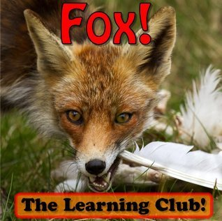 Fox! Learn About Fox And Learn To Read - The Learning Club! (45+ Photos of Fox)  by  Leah Ledos