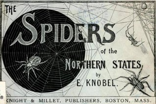 The spiders of the northern states  by  Edward Knobel