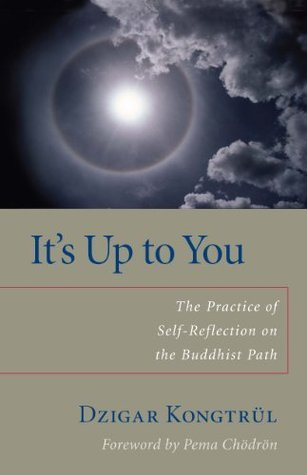Its Up to You: The Practice of Self-Reflection on the Buddhist Path Dzigar Kongtrul