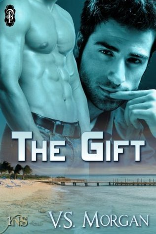 The Gift (1 Night Stand Series)  by  V.S. Morgan