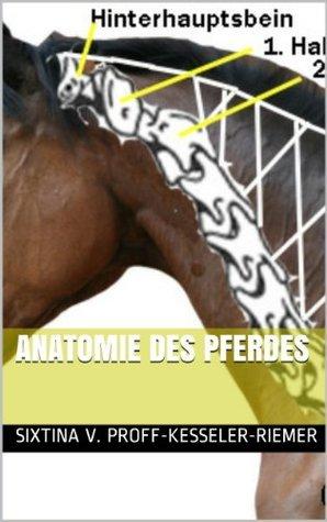 Anatomie des Pferdes (Grundlagen des Pferdewissens für Reiter und Pferdefreunde) Sixtina v. Proff-Kesseler-Riemer