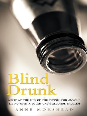 Blind Drunk: Light at the End of the Tunnel for Anyone Living with a Loved Ones Alcohol Problem  by  Anne Morshead