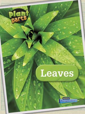 Leaves  by  Melanie Waldron