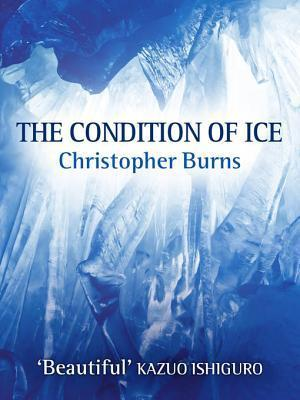 The Condition of Ice Christopher Burns