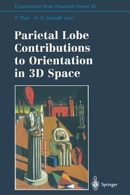 Parietal Lobe Contributions to Orientation in 3D Space  by  Peter Thier