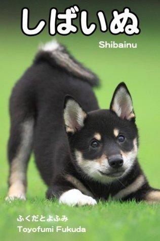 shibainu (slowphoto) Toyofumi Fukuda