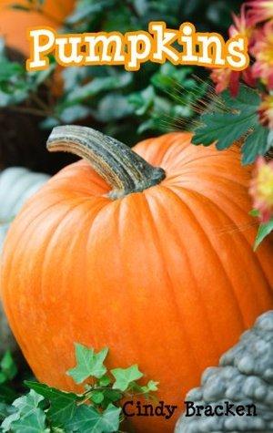 Pumpkins  by  Cindy Bracken