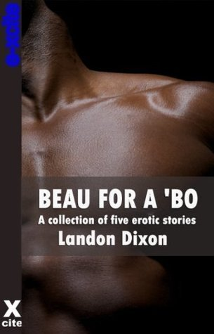 Beau For A Bo - a collection of gay erotic stories  by  Landon Dixon