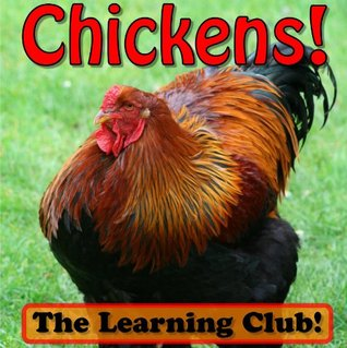 Chickens! Learn About Chickens And Learn To Read - The Learning Club! (45+ Photos of Chickens) Leah Ledos