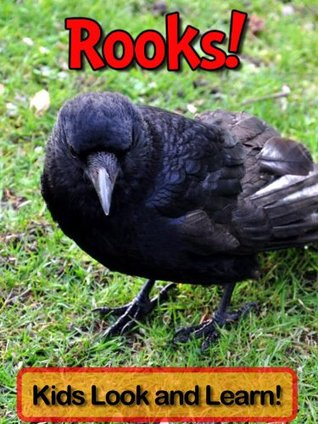 Rooks! Learn About Rooks and Enjoy Colorful Pictures - Look and Learn! (50+ Photos of Rooks) Becky Wolff