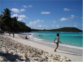 Cold Turkey in Paradise: Twelve Days Off the Internet at Maho Bay  by  Len Edgerly