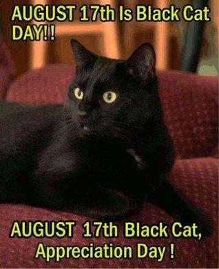Black Cat Appreciation Day: Their Stories 2013  by  Rikkis Refuge