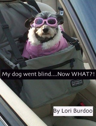 My dog went blind - Now WHAT?!  by  Lori Burdoo