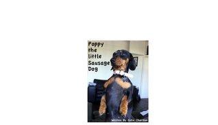 Poppy Das Kleine Sausage Dog (Buch 1) (German Edition)  by  Colin Charlton