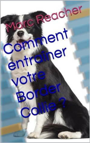 Comment entraîner votre Border Collie ? Marc Reacher