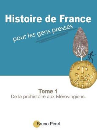 Histoire de France pour les gens pressés - De la préhistoire aux Mérovingiens. Bruno Pérel