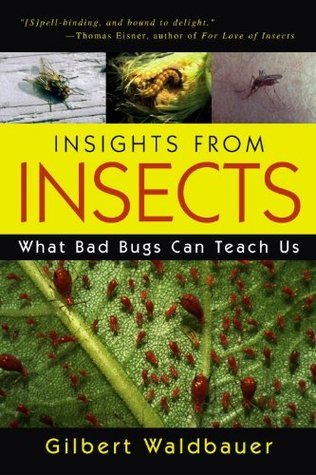 Insights From Insects: What Bad Bugs Can Teach Us  by  Gilbert Waldbauer