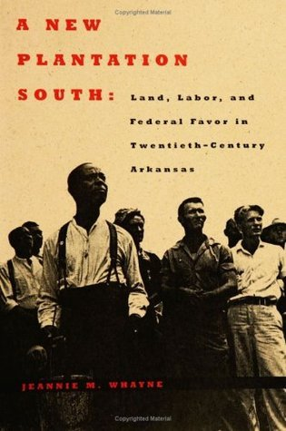 A New Plantation South: Land, Labor, and Federal Favor in Twentieth-Century Arkansas (Carter G. Woodson Institute Series)  by  Jeannie M. Whayne