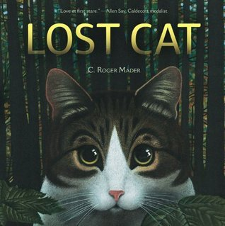 Lost Cat  by  Roger Mader