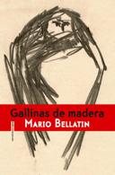 Gallinas de madera  by  Mario Bellatin