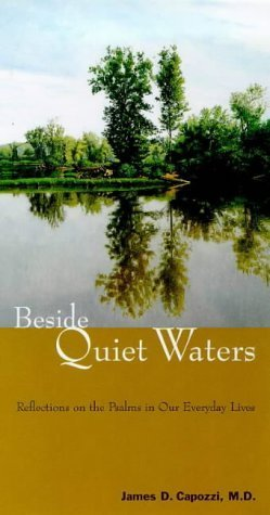 Beside Quiet Waters: The Psalms in Our Everyday Lives  by  James D. Capozzi