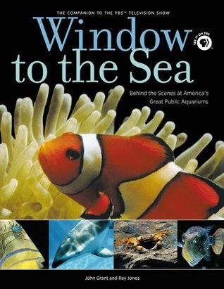 Window to the Sea: Behind the Scenes at Americas Great Public Aquariums  by  John     Grant