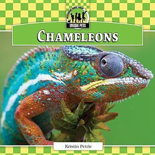 Chameleons Kristin Petrie