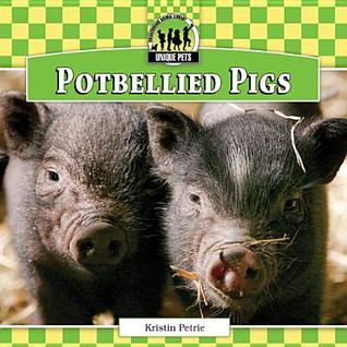 Potbellied Pigs  by  Kristin Petrie
