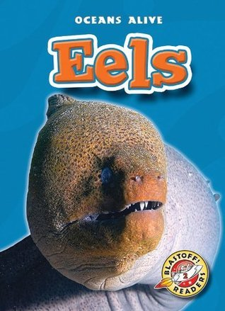 Eels  by  Derek Zobel