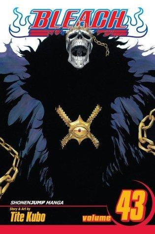 Bleach, Volume 43: Kingdom of Hollows Tite Kubo