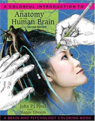 A Colorful Introduction to the Anatomy of the Human Brain  by  John P.J. Pinel