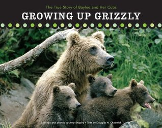 Growing Up Grizzly Amy Shapira