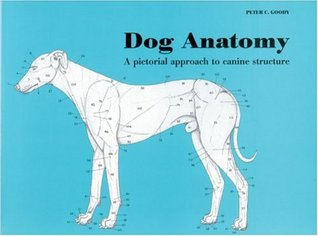 Dog Anatomy: A Pictorial Approach to Canine Structure  by  Peter Goody
