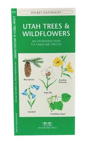 Utah Trees & Wildflowers: A Folding Pocket Guide to Familiar Species James Kavanagh