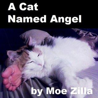 A Cat Named Angel Moe Zilla