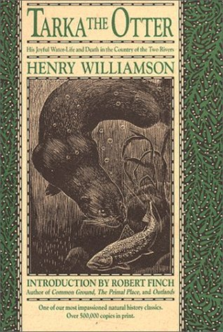 The Old Stag  by  Henry Williamson