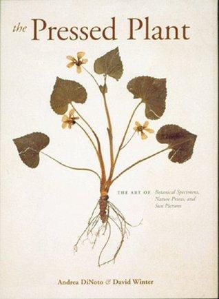 The Pressed Plant Andrea DiNoto