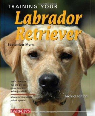 Training Your Labrador Retriever  by  September Morn
